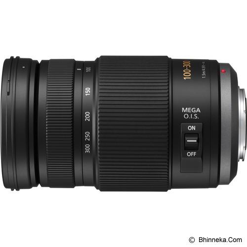 PANASONIC Lumix G Vario 100-300mm/F4.0-5.6/MEGA O.I.S [H-FS100300E] - Camera Mirrorless Lens
